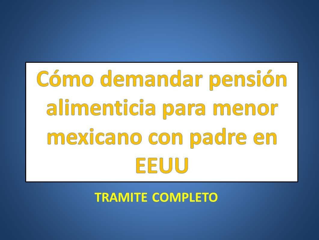 Cómo demandar pensión alimenticia para menor mexicano con padre en ...